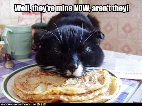 unny-pictures-cat-eats-your-pancakes