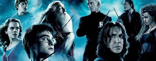 Potter et le prince de sang mêle